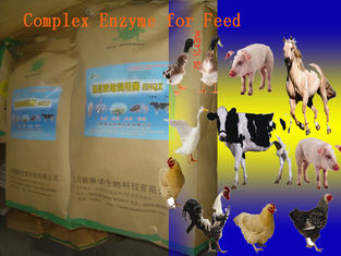 Animal Universal Nutrition Compound Enzyme Feed Additive Powder For Regular Daily Diet Szym-nutriRE