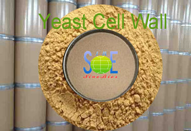 ( Immune Polysaccharide ) Yeast Cell Wall with 35% Max Crude Protein as Feed Grade Additive Powder – Typed SYE-CW35