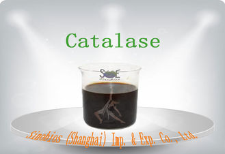 Industrial Grade Enzyme Catalase Liquid 200000u/mL for Textile Szym-CAT200LT