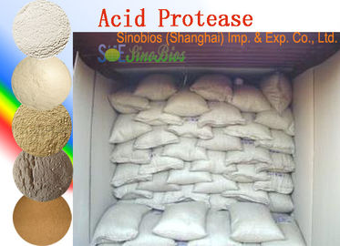 Food Grade Acid Protease Enzyme Powder For Ethanol Activity 100,000u/g Szym-ACPR100A